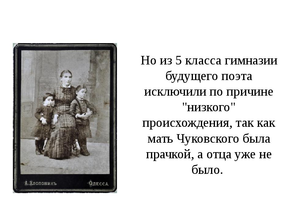 """Но из 5 класса гимназии будущего поэта исключили по причине """"низкого"""" происхо..."""