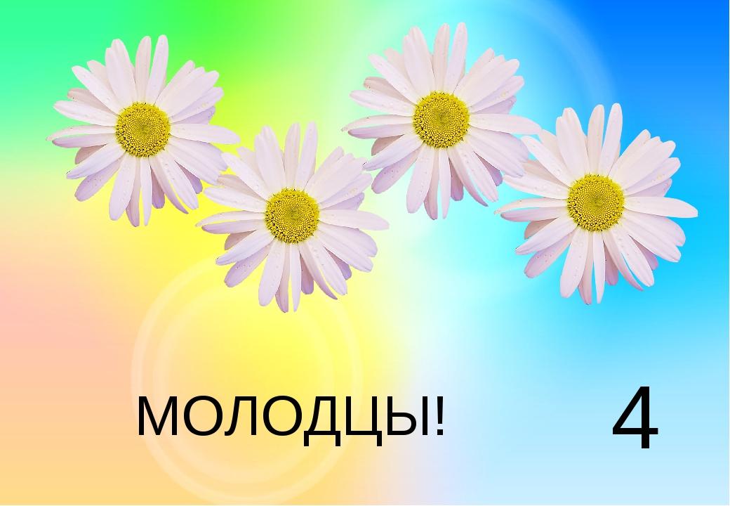 4 МОЛОДЦЫ!