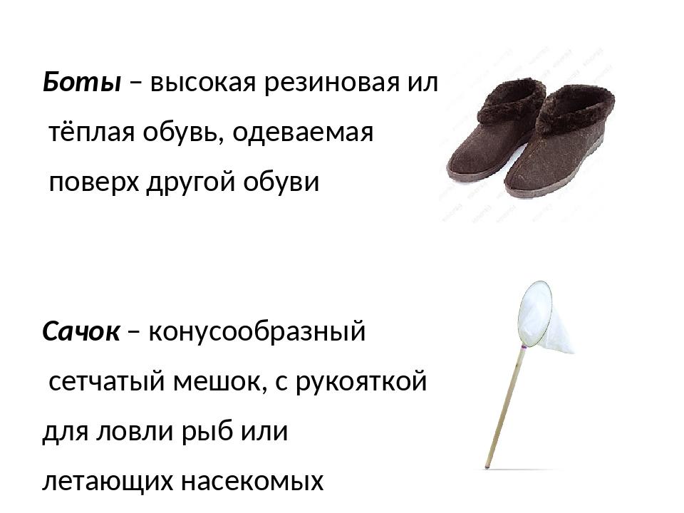 Боты – высокая резиновая или тёплая обувь, одеваемая поверх другой обуви Сачо...