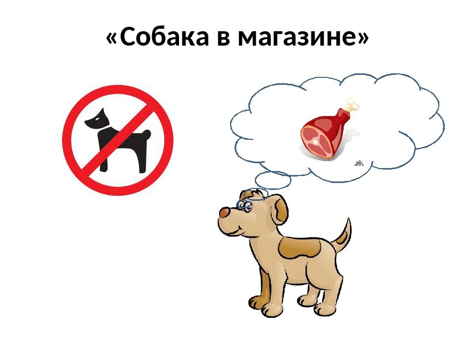 «Собака в магазине»