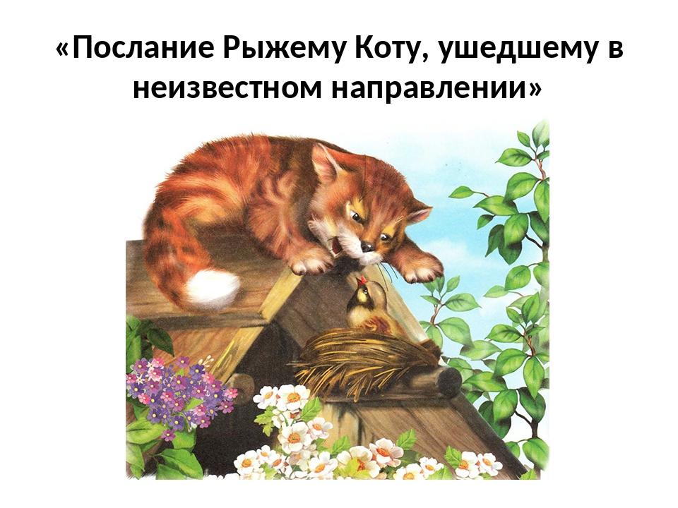 «Послание Рыжему Коту, ушедшему в неизвестном направлении»