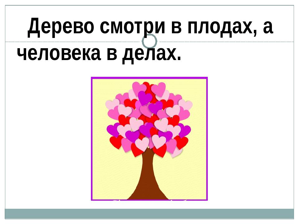 Дерево смотри в плодах, а человека в делах.