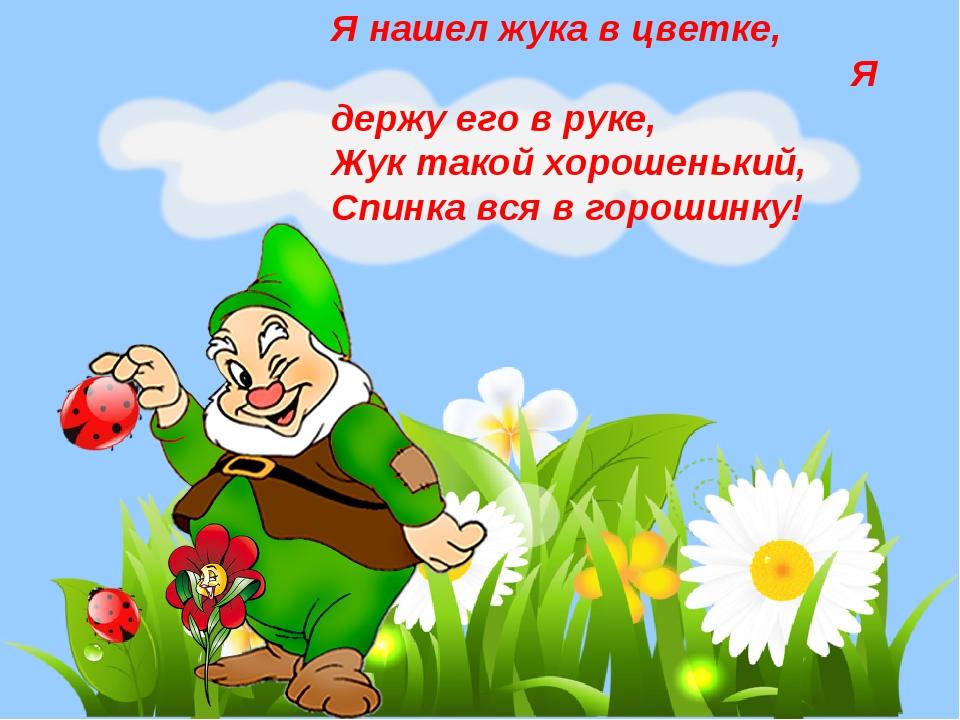 Я нашел жука в цветке, Я держу его в руке, Жук такой хорошенький, Спинка вся...