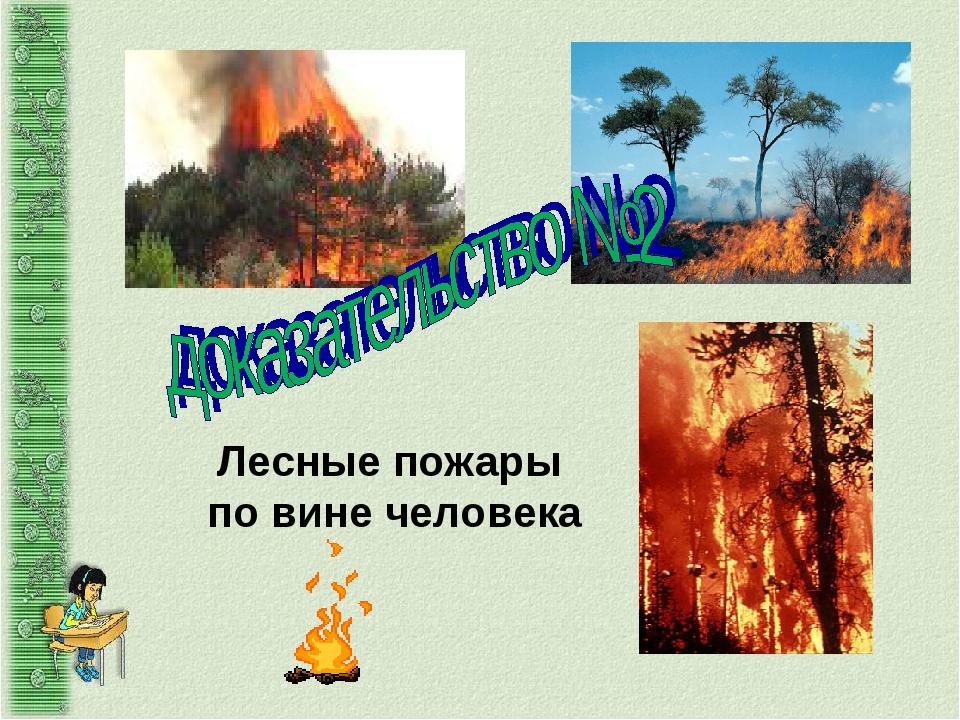 Лесные пожары по вине человека