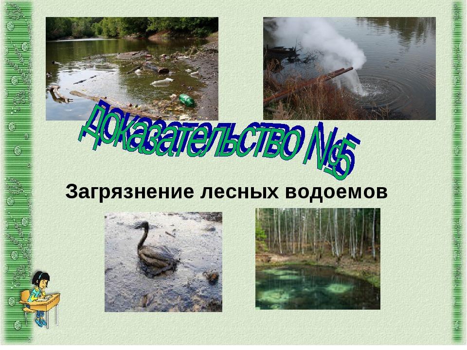 Загрязнение лесных водоемов