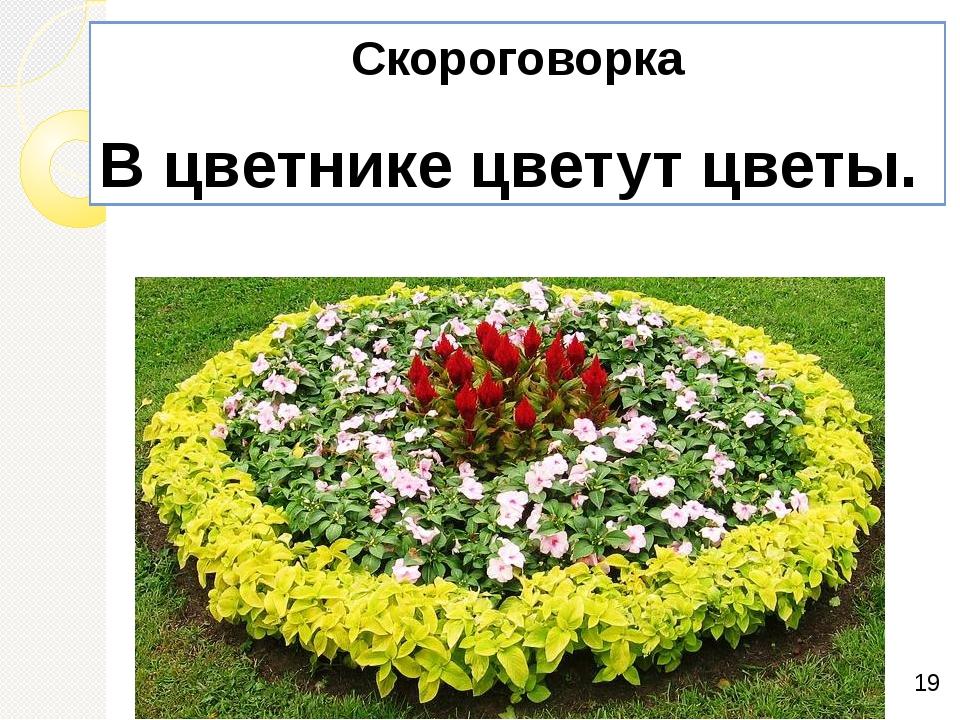 Скороговорка В цветнике цветут цветы.